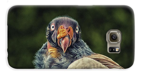 King Vulture Galaxy S6 Case