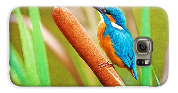 Kingfisher Galaxy S6 Case - Kingfisher by Laura D Young