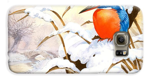 Kingfisher Galaxy S6 Case - Kingfisher Plate by John Francis