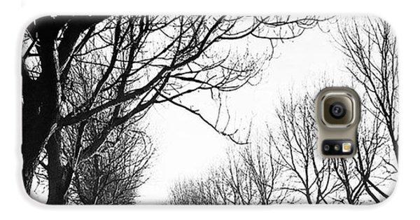 Sky Galaxy S6 Case - Lady Anne's Drive, Holkham by John Edwards