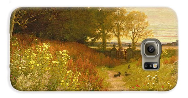 Landscape With Wild Flowers And Rabbits Galaxy S6 Case by Robert Collinson