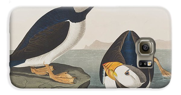 Puffin Galaxy S6 Case - Large Billed Puffin by John James Audubon