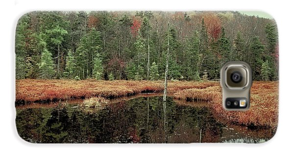 Galaxy S6 Case featuring the photograph Last Of Autumn On Fly Pond by David Patterson