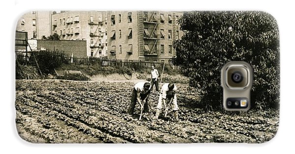 Last Working Farm In Manhattan Galaxy S6 Case by Cole Thompson