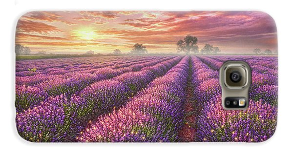 Mice Galaxy S6 Case - Lavender Field by Phil Jaeger