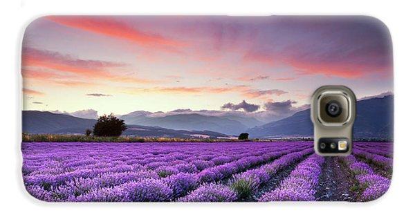 Landscapes Galaxy S6 Case - Lavender Season by Evgeni Dinev