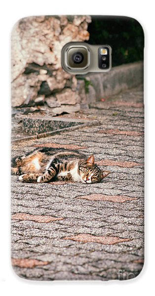 Galaxy S6 Case featuring the photograph Lazy Cat    by Silvia Ganora