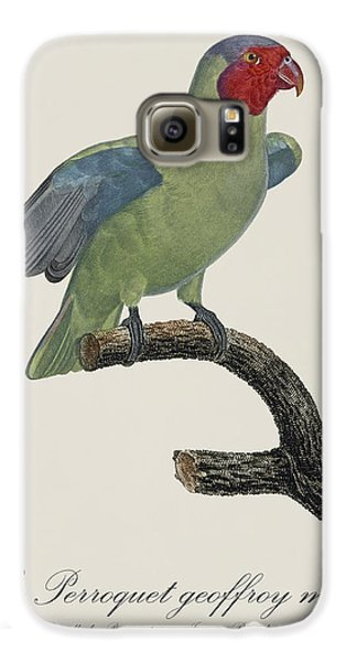 Le Perroquet Geoffroy Male / Red Cheeked Parrot - Restored 19th C. By Barraband Galaxy S6 Case