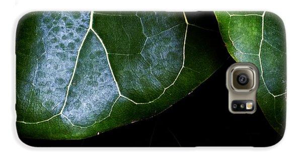 Leaf Galaxy S6 Case