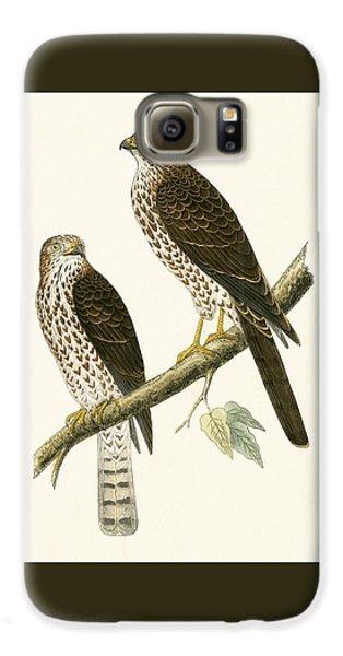 Levant Sparrow Hawk Galaxy S6 Case