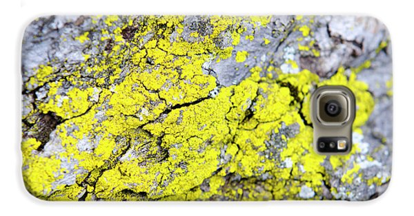 Galaxy S6 Case featuring the photograph Lichen Pattern by Christina Rollo