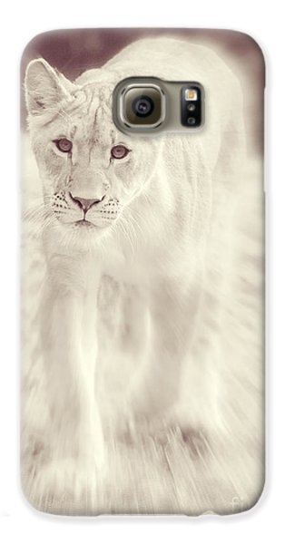 Lion Spirit Animal Galaxy S6 Case