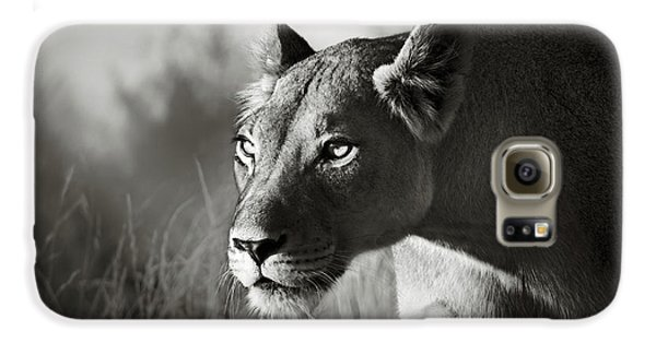 Portraits Galaxy S6 Case - Lioness Stalking by Johan Swanepoel