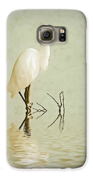 Little Egret Galaxy S6 Case by Sharon Lisa Clarke