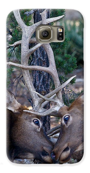 Locking Horns - Well Antlers Galaxy S6 Case