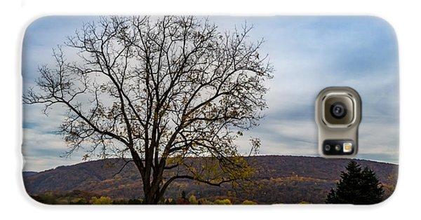 Lone Tree Galaxy S6 Case