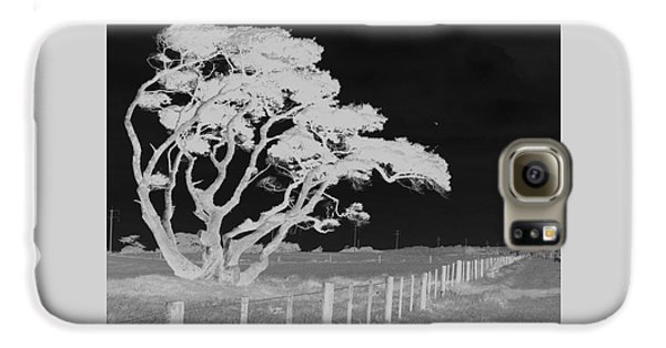 Galaxy S6 Case featuring the photograph Lone Tree, West Coast by Nareeta Martin