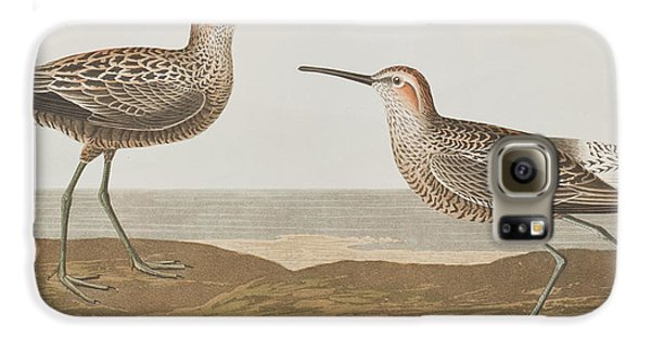 Long-legged Sandpiper Galaxy S6 Case by John James Audubon