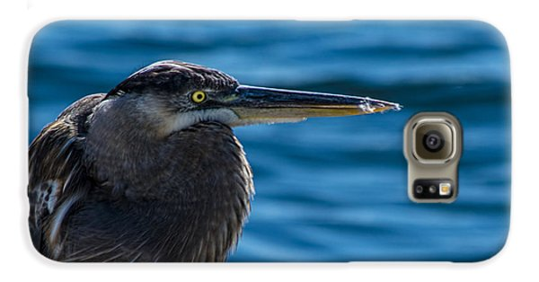 Looking For Lunch Galaxy S6 Case by Marvin Spates