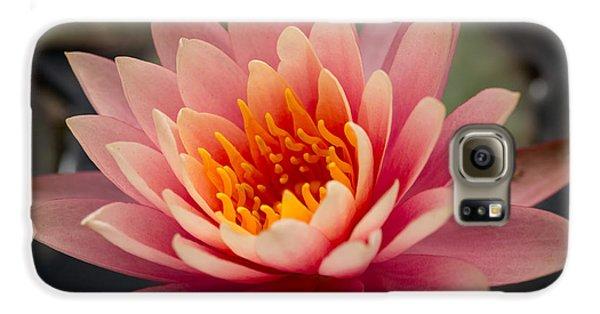 Lotus Flower Galaxy S6 Case