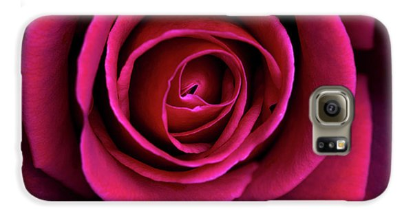 Galaxy S6 Case featuring the photograph Love Is A Rose by Linda Lees