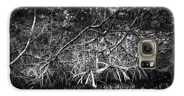 Mangrove Galaxy S6 Case - Low Tide Bw by Marvin Spates