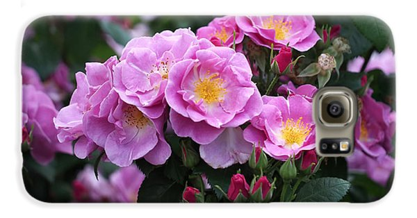 Lucky Floribunda Roses Galaxy S6 Case by Rona Black