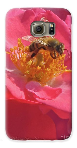 Galaxy S6 Case featuring the photograph Luscious Rose With A Bee by Nancy Lee Moran