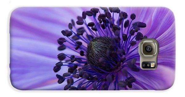 Macro Of Lavender Purple Anemone Galaxy S6 Case