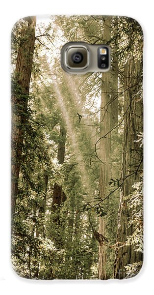 Magical Forest 2 Galaxy S6 Case by Ana V Ramirez