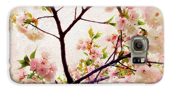 Galaxy S6 Case featuring the photograph Asian Cherry Blossoms by Jessica Jenney