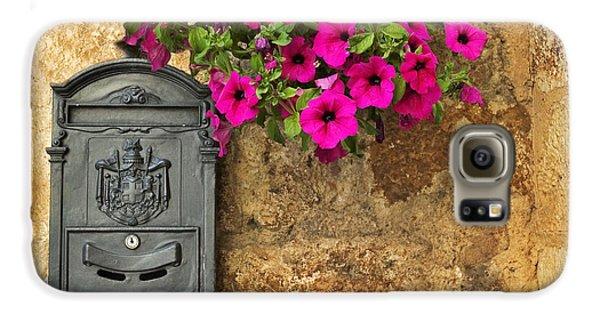 Mailbox With Petunias Galaxy S6 Case