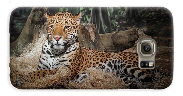 Leopard Galaxy S6 Case - Majestic Leopard by Scott Norris