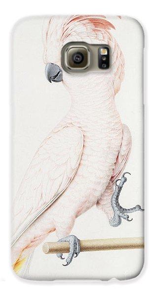 Major Mitchell's Cockatoo Galaxy S6 Case by Nicolas Robert
