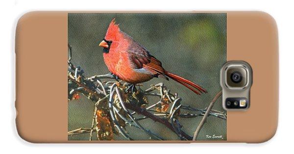 Male Cardinal Galaxy S6 Case