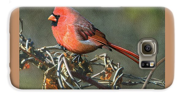 Male Cardinal Galaxy S6 Case by Ken Everett