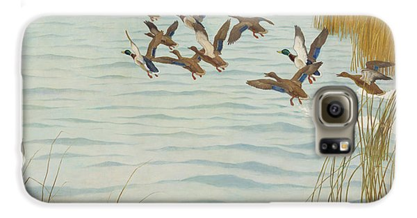 Mallards In Autumn Galaxy S6 Case