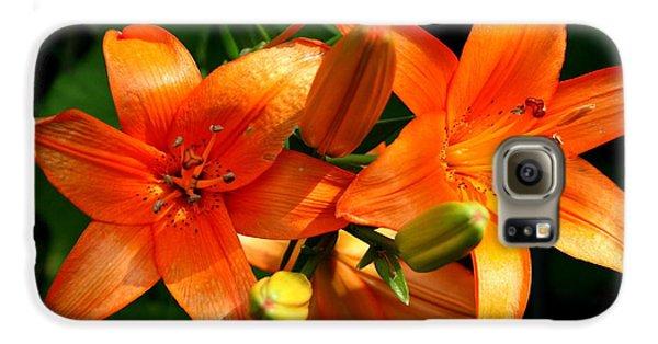 Floral Galaxy S6 Case - Marmalade Lilies by David Dunham