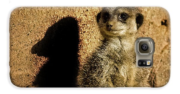 Meerkat Galaxy S6 Case - Me And My Shadow by Martin Newman
