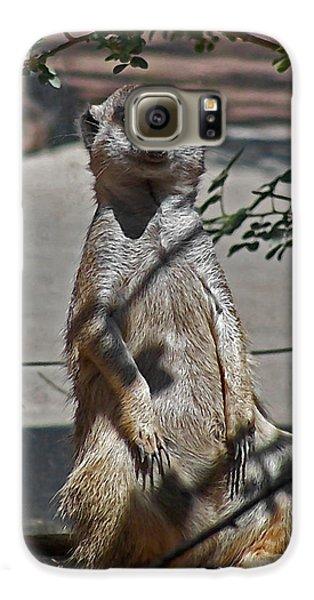 Meerkat 2 Galaxy S6 Case by Ernie Echols