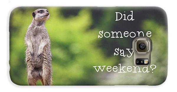 Meerkat Galaxy S6 Case - Meerkat Asking If It's The Weekend Yet by Jane Rix