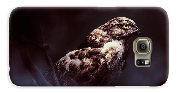 Falcon Galaxy S6 Case - Midnight Hawk by Jorgo Photography - Wall Art Gallery