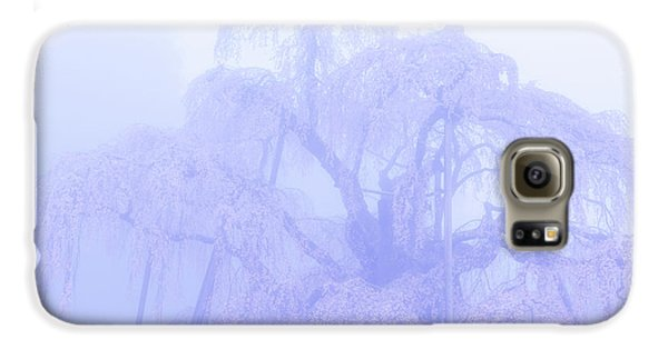 Miharu Takizakura Weeping Cherry01 Galaxy S6 Case by Tatsuya Atarashi