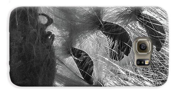 Milkweed Sunburst In Black And White Galaxy S6 Case
