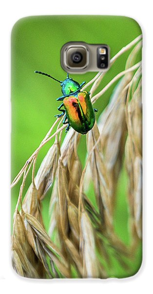 Galaxy S6 Case featuring the photograph Mini Metallic Magnificence  by Bill Pevlor