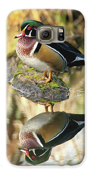 Mirrored Wood Duck Galaxy S6 Case
