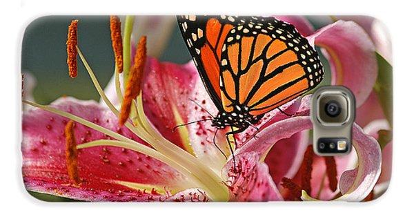 Lily Galaxy S6 Case - Monarch On A Stargazer Lily by Cindi Ressler