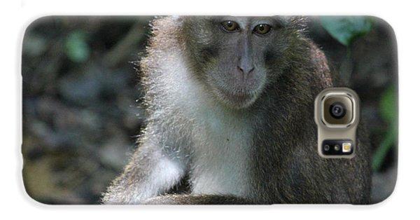 Monkey Business Galaxy S6 Case