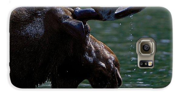 Moose Head Galaxy S6 Case