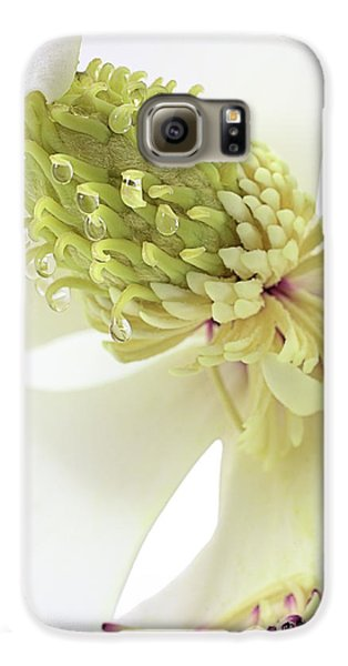 Galaxy S6 Case featuring the photograph Morning Dew On The Magnolia by JC Findley